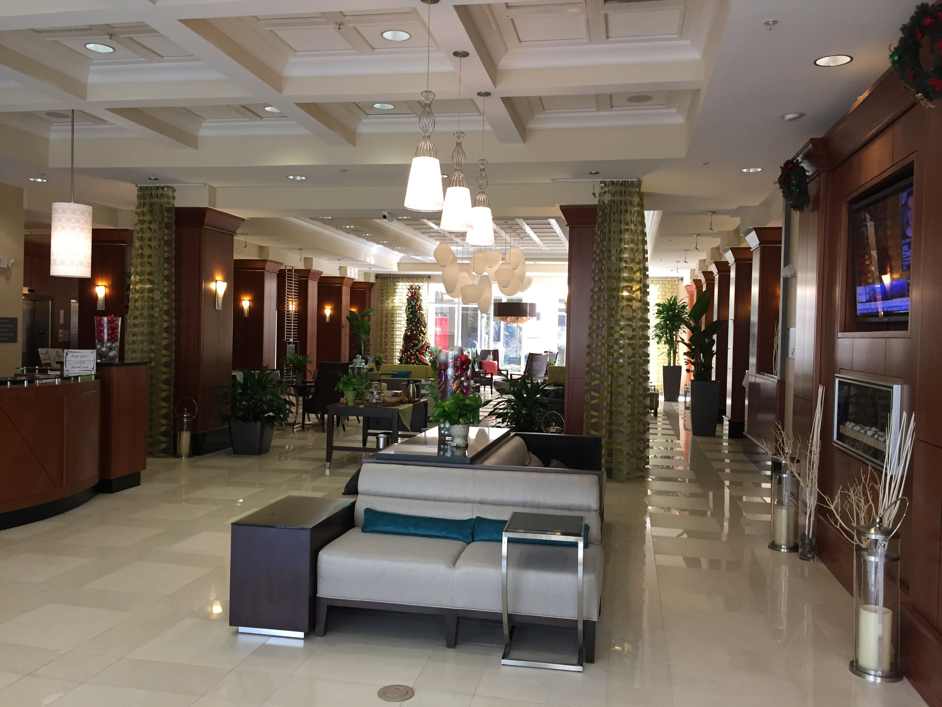 Hilton Garden Inn Reveals New Hotel In Dalton