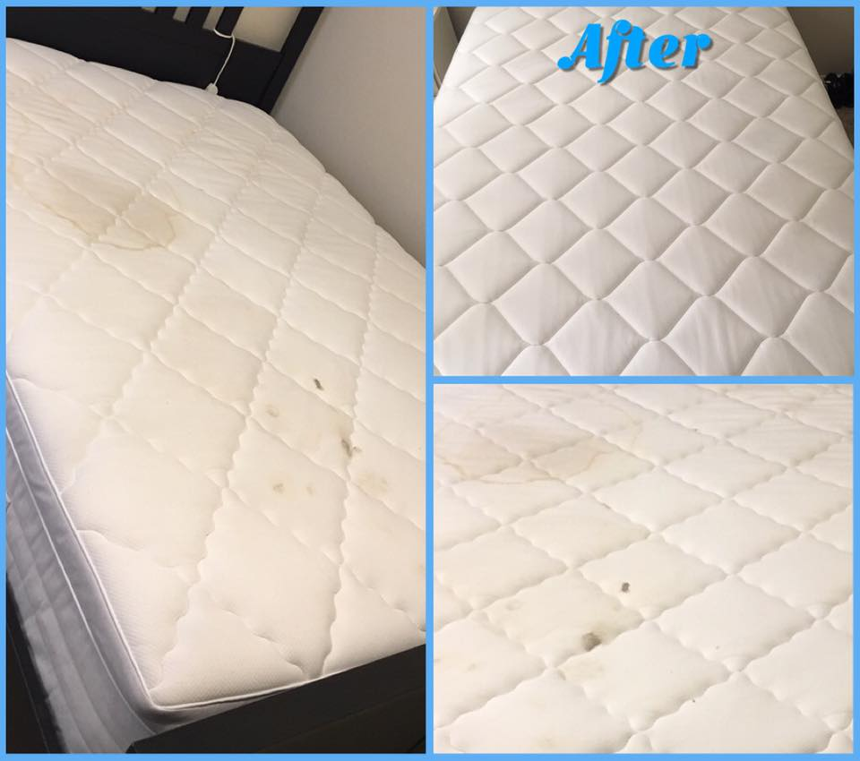 Clean Sleep Expands Across Canada and Into GCC (Gulf Countries)