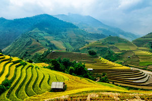 Vietnam Hospitality Market: 2018 Overview and 2019 Outlook