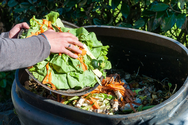 Hotel Industry Teams Up With World Wildlife Fund and The Rockefeller Foundation to Reduce Food Waste