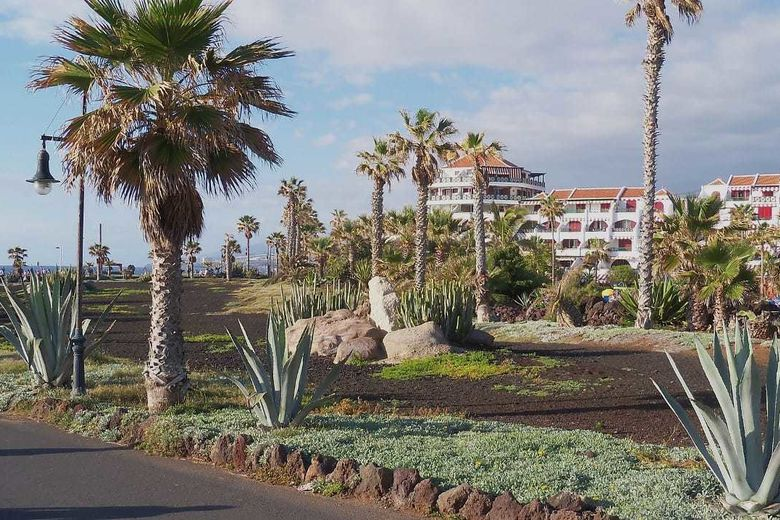 The best holiday experience with family and friends in Tenerife and Majorca