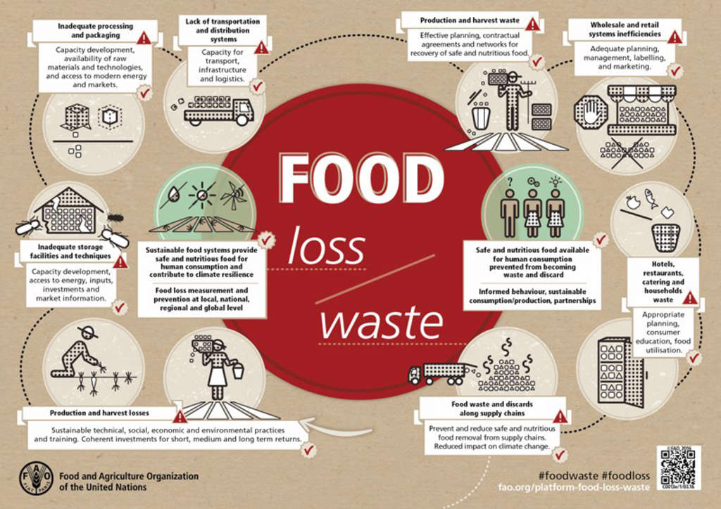 Food Waste Management Innovations In The Foodservice Industry